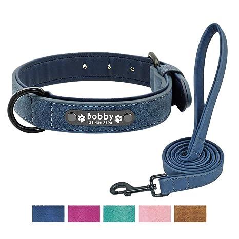 Didog - Collar de Perro Acolchado de Piel Suave con Placa de ...