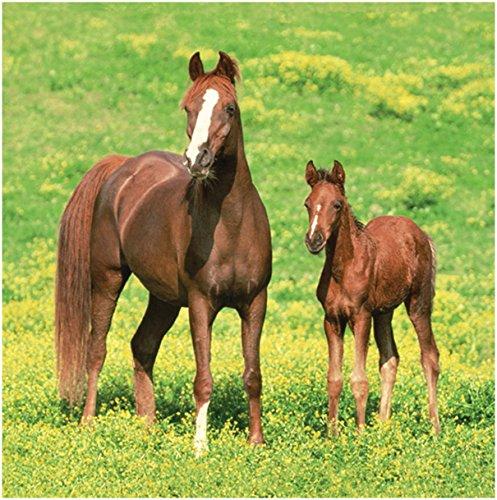 Horse Napkin - 6