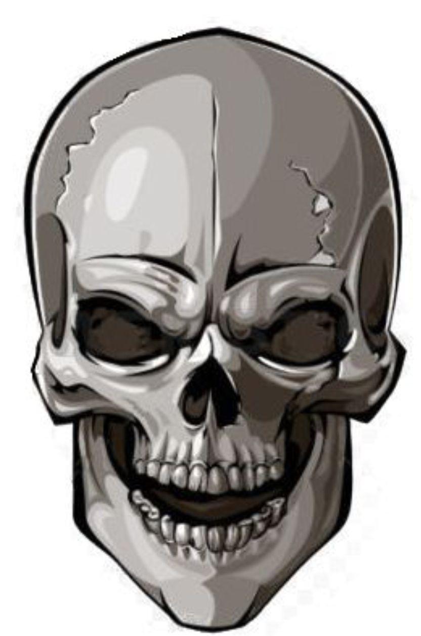 autocollant sticker voiture moto macbook tete de mort gris tunning jdm squelette