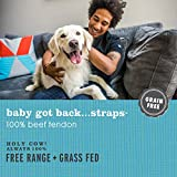 I and love and you Baby Got Back Strap - Grain Free Dog Chews, 100% Beef Tendon, 8 Pack