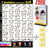 Barbell Weight Lifting Bar Exercise Workout Banner Poster BIG 28 X 20'' Train Endurance, Tone, Build Strength & Muscle Home Gym Chart