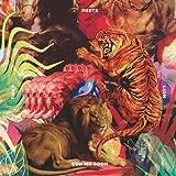 Tiger Meets Lion (Inclus Coupon MP3)