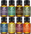 Art Naturals Aromatherapy Top 8 Essential Oil Kit -100% Pure Therapeutic Grade - (Lavender, Tea Tree, Peppermint, Frankincense, Eucalyptus, Sweet Orange, Rosemary & Lemongrass) - 2017 Edition Gift Set from Artnaturals