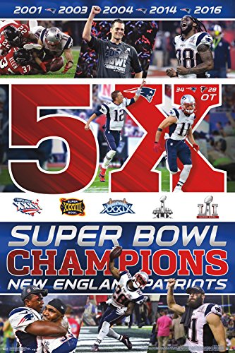 Trends International RP15137 Collector's Edition Wall Poster Super Bowl Li Ne Patriots Celebration, , 24 x 36