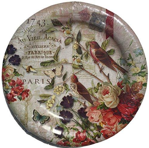 - Punch Studio 8 inch Appetizer Salad Dessert Paper Plates, Fleur de Triomphe Bird Cage Sparrow Floral 95918, Pkg of 16