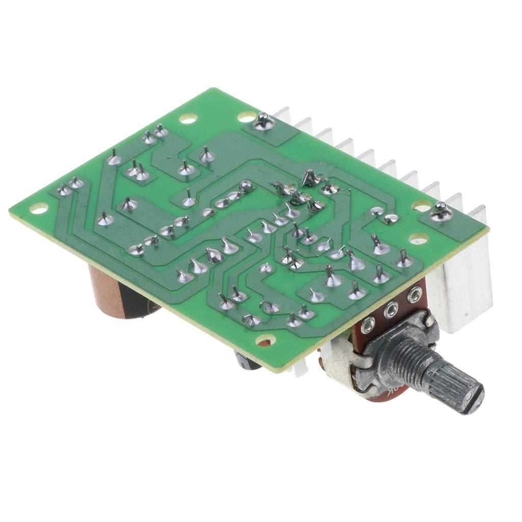 Homyl 1x m/ódulo de amplificador de TDA2030 Mono 20W AC//DC 12V con Doble Canal