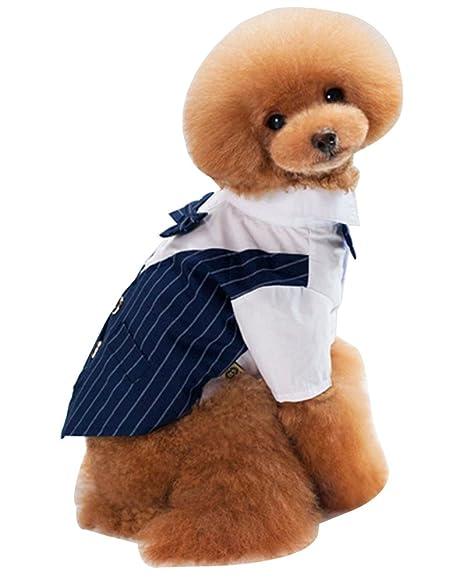 Mascotas Camisa Fiesta Traje Formal Traje Ropa Abrigo Para Perros ...