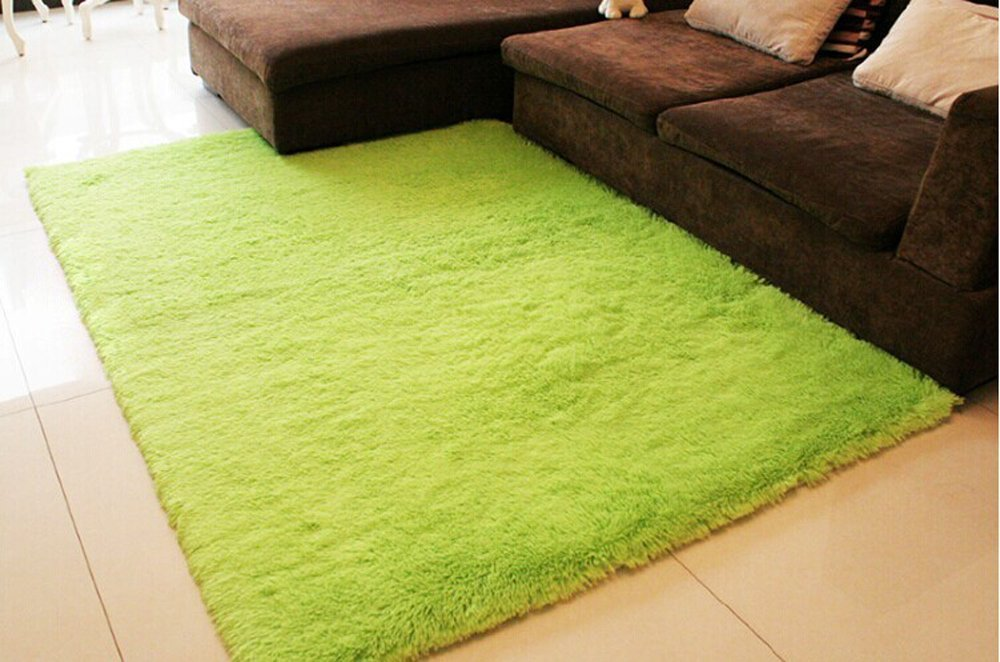 Ultra Soft 4.5 Cm Thick Indoor Morden Shaggy Area