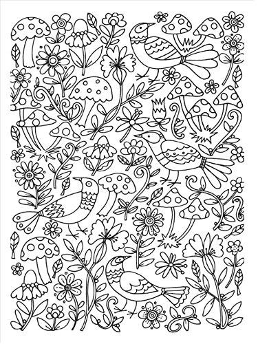 Arte antiestrés: 100 jardines para colorear OBRAS DIVERSAS: Amazon ...