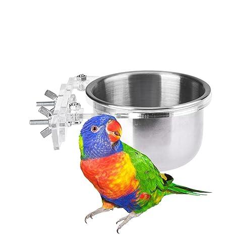 Alimentación de cocina acero inoxidable Copa Agua Bebedero para ...