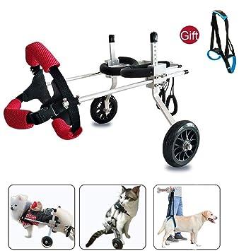Amazon.com: CHUDAN – silla de ruedas para perro, para perros ...