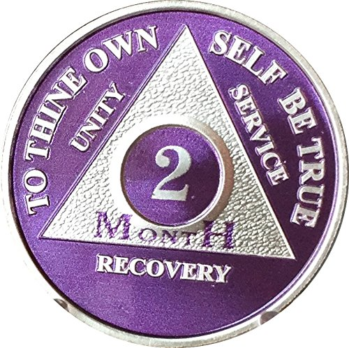 2 Month Purple Silver Plated AA Medallion 60 Day Chip (Raised Silver Plated)