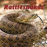 Rattlesnakes, Julie Fiedler, 1404238344