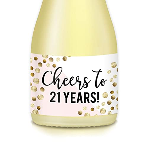 Womans 21st Birthday Party Gift Idea Decoration Mini Champagne Wine Bottle Labels CHEERS TO