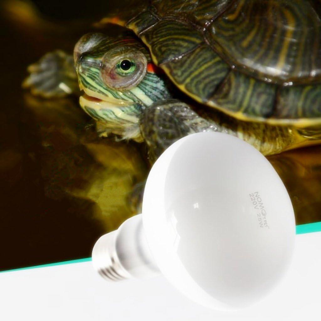 FLAMEER Reptil Haz de Luz Bombilla Iluminaci/ón Calor L/ámpara Concentrada Luces de Sol para Terrarios 50w