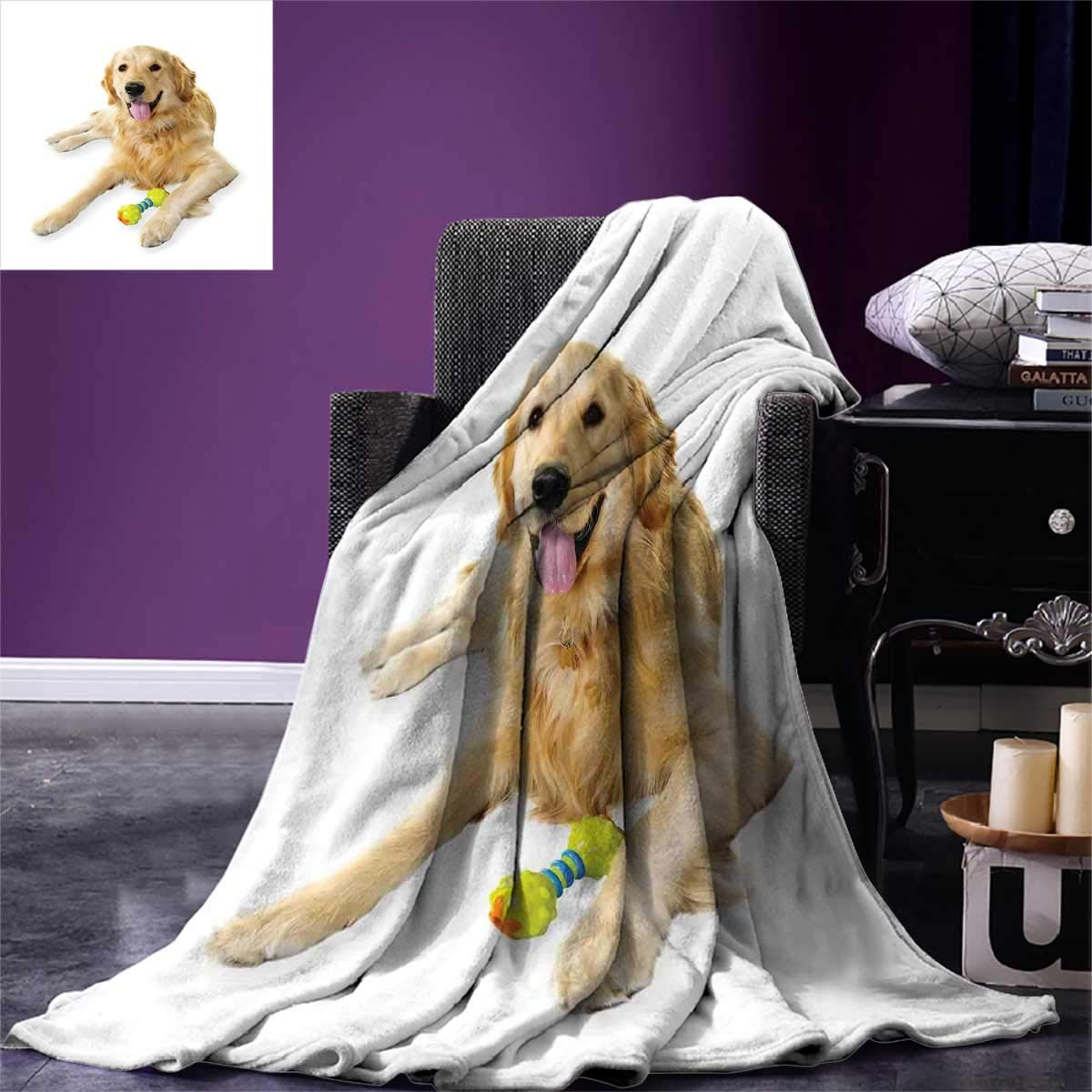 color02 60\ color02 60\ golden Retriever,Park Blanket,Pet Dog Laying Down with Toy Friendly Domestic Puppy Playful Companion,All Weather Blanket,Multicolor,Size:60 x36