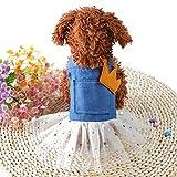 Freerun Fashion Pet Puppy Dog Cat Bow Tutu Lace Bling Star Dress Crown Princess Skirt Costume, XS