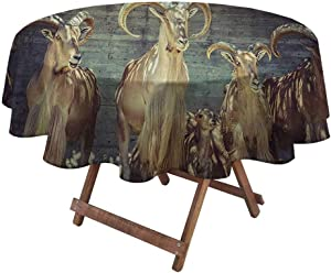 Waterproof Tablecloth Antlers Decor for Dining Room and Party Capricorn Group of Spanish Ibex Under Shade Sunbeams Animal Nature Picture Print 50