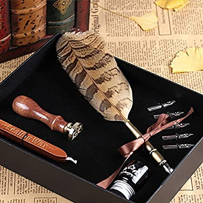 Zhi Jin Luxury Metal Copper Antique Owl Feather Pens With Pen Nibs Stem Ink Seal Wax Writing Quill Set Present