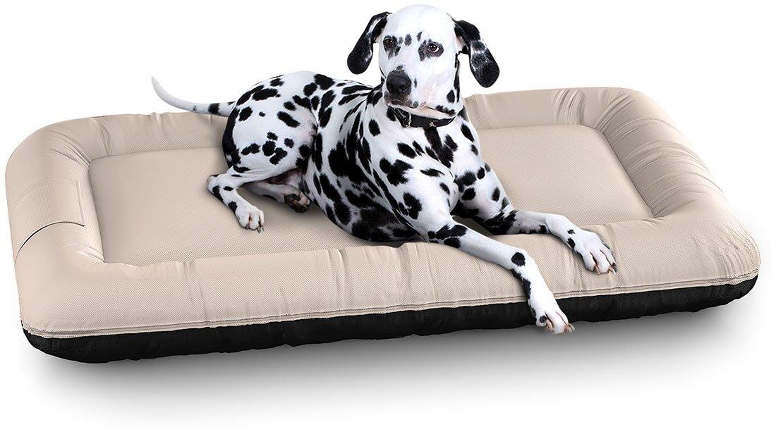 Knuffelwuff panier chien, lit pour chien, coussin, corbeille pour chien Lucky Color Edition In et Outdoor, imperméable, beige XL 100 x 73cm 13056