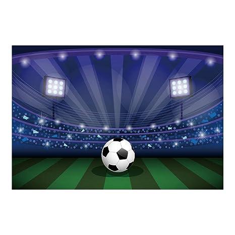 Amazon.com: lfeey 5 x 3ft fútbol estadio telón de fondo ...