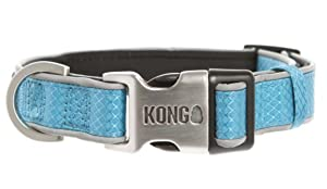Best Dog Collar for Everyday Use