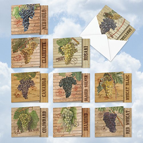 MQ4603OCB-B1x10 Through the Grapevine: 10 Assorted 'Square-Top' Blank, All Occasions Note Cards Featuring Images of Vintage Grapevines and Leaves; With - Grapevine Images