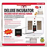 LITTLE GIANT Deluxe Incubator w/Egg Turner