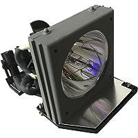 Litance BL-FS200B / SP.80N01.001 Replacement Lamp for Optoma EP738P, EP739, EP739H, EP739X, EP745, EzPro738P, EzPro739, EzPro739H, EzPro745, H27, H27A, HD720X Projectors