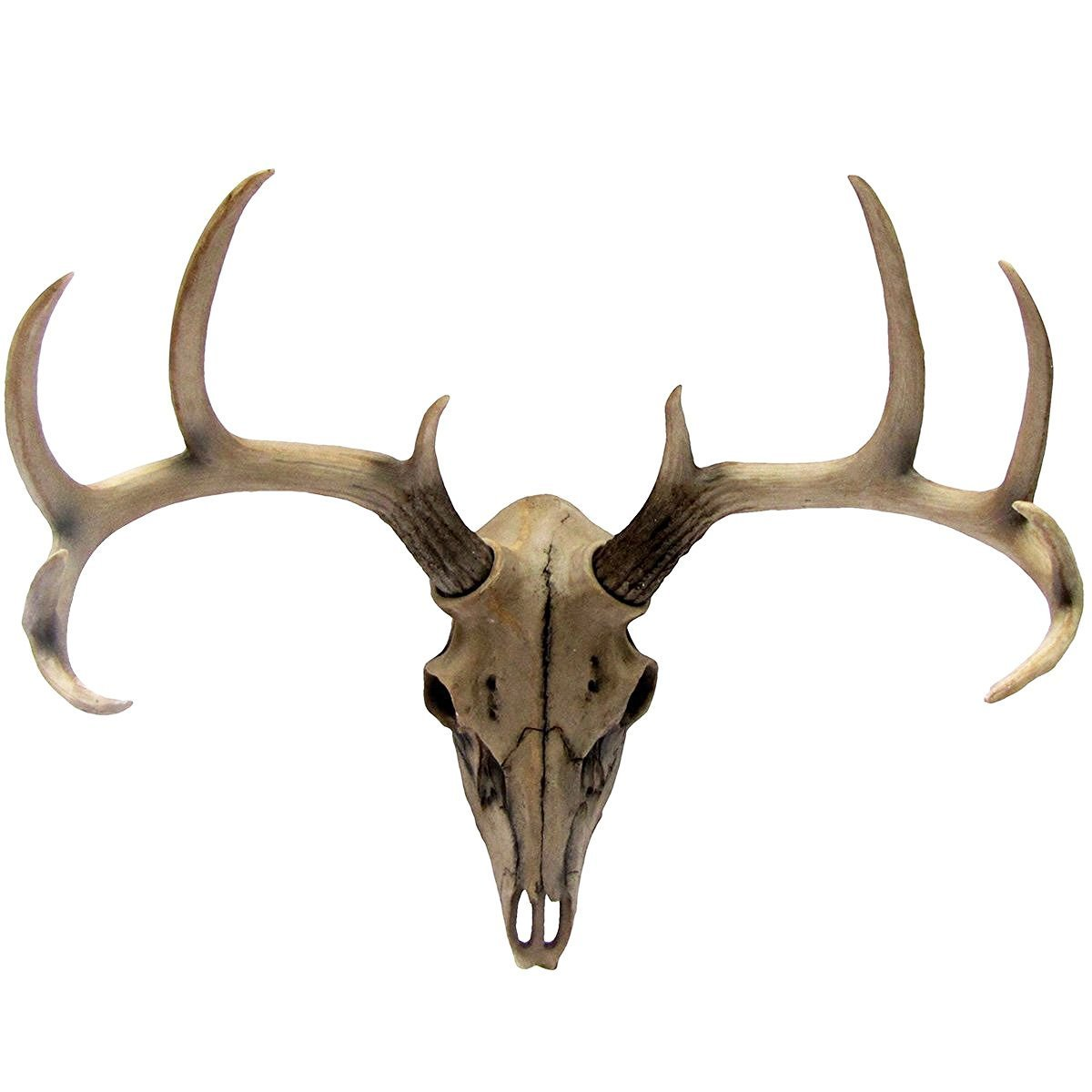 Atlantic Collectibles 10 Point Buck Head Skull Wall Mounted Hanging Plaque Figurine 18.5''L by Ebros Gift