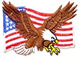 (US) Eagle Hawk Bald UNITED STATES US USA American Flag Team Military Army Biker Jacket T shirt Uniform Patch Sew Iron on Embroidered Badge Sign Costume