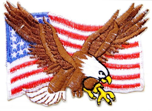 Army Chick Costumes (Eagle Hawk Bald UNITED STATES US USA American Flag Team Military Army Biker Jacket T shirt Uniform Patch Sew Iron on Embroidered Badge Sign Costume)