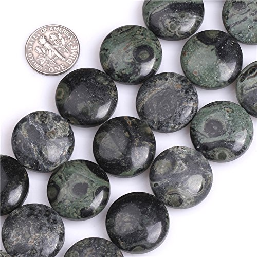 - Kambaba Jasper Beads for Jewelry Making Natural Gemstone Semi Precious 20mm Coin 15