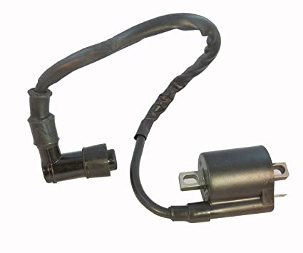 61 4oqvvfsL._SX425_ amazon com ignition coil polaris trail boss 250 atv quad 1988 1989