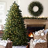 Balsam Hill Aberdeen Spruce Prelit Artificial Christmas Tree, 6 Feet, Clear Lights