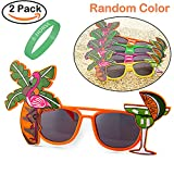 Hawaii Flamingo Theme Plastic Glasses Shades Sunglasses Eyewear for Party Props, Decoration (2 Packs) by R ? HORSE with Fluorescent Wristband (Random Color)