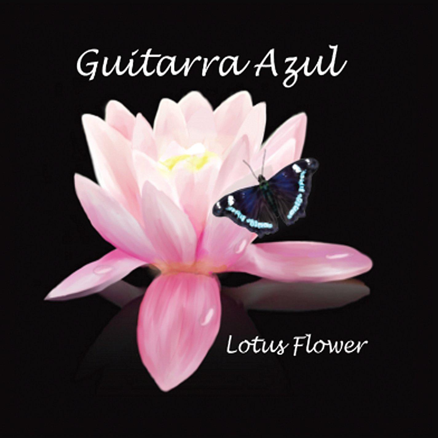 Guitarra Azul Lotus Flower Amazon Music
