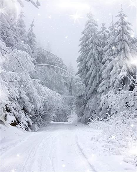 Favorit Amazon.com : AOFOTO 8x10ft Snow Covered Pine Trees Backdrop White BE07