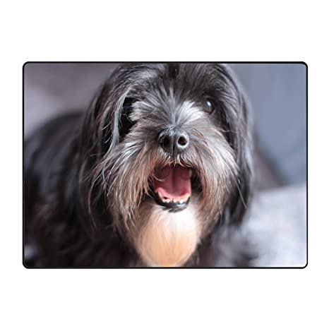 Amazoncom Long Hair Terrier Printed Soft Floor Door Mat Carpet