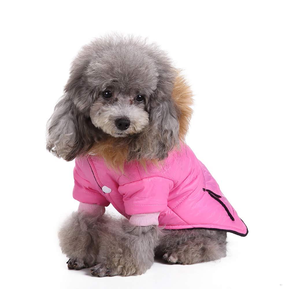 Dragon868 Haustier Hund Katze Weltweine Winter Warm Clothing Kost/üm Mantel Bekleidung