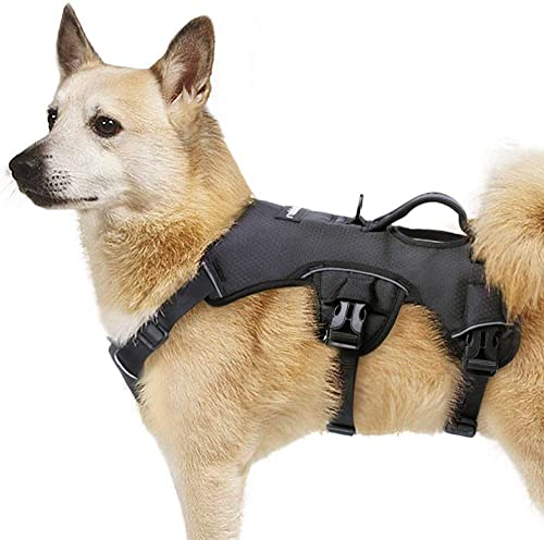 rabbitgoo-Escape-Proof-Dog-Harness,-Soft-Padded-Full-Body-Pet-Harness