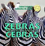 Zebras/Cebras, Amelie Von Zumbusch, 1404276092