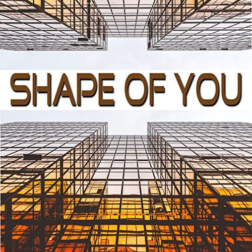 Shape of You (Instrumental, Playback, Karaoke)