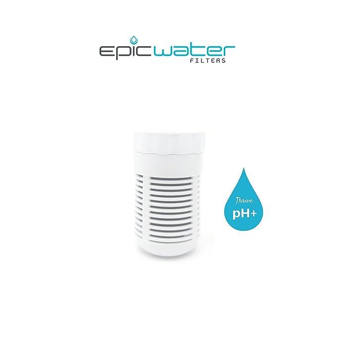 Filtro de repuesto para prosperar PH + alcalinidad jarra de agua alcalina, aumenta ph2o hasta 9,5, elimina 99,99% de agua del grifo contaminantes como el ...