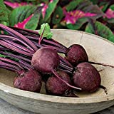 Detroit Dark Red Medium Top Beet Seeds 1000