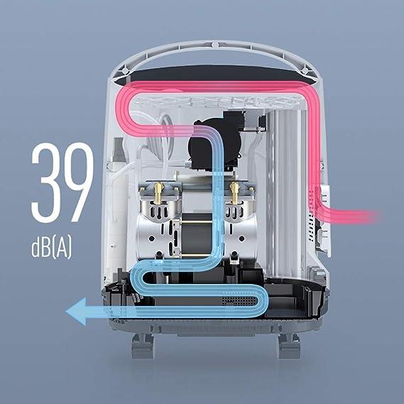 MEI XU Concentrador de oxígeno, la atomización de oxígeno Integrado 3L concentración máquina hogar de oxígeno portátil 90% Barra de oxigeno (Color : A): Amazon.es: Hogar