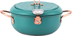 Deep Frying Pot, Japanese Style Fryer Pot, Mini Stainless Steel Deep Fry Pan with Thermometer and Lid Oil Drip Drainer Rack for Fry Chicken Chips Fish Shrimp (Green 8in)