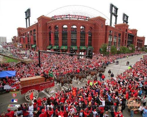 Mlb Victory Series - Busch Stadium St. Louis Cardinals 2011 World Series Victory Parade Photo 8x10