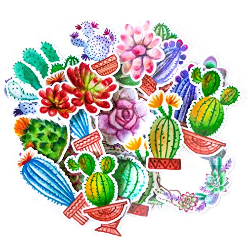 - Navy Peony Colorful Cactus Stickers | Cute Waterproof Decals for Your Water Bottles, Laptops and Phones | Girls' Sticker Packs for Your Scrapbook, Planners and Bullet Journals (31 Pieces)