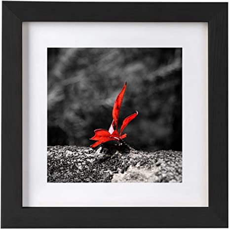Home D\u00e9cor Photography 12x12 Matted and Framed Collage